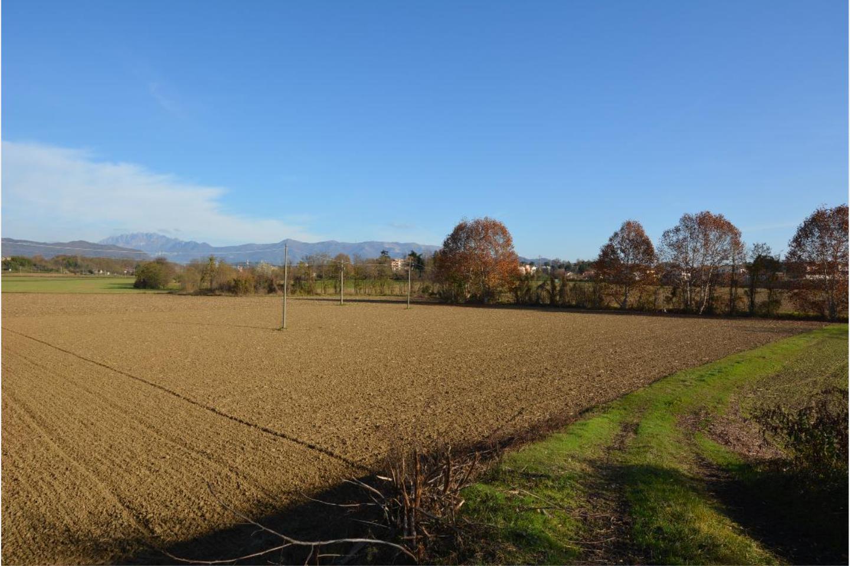 Terreno Agricolo in Vendita Osnago