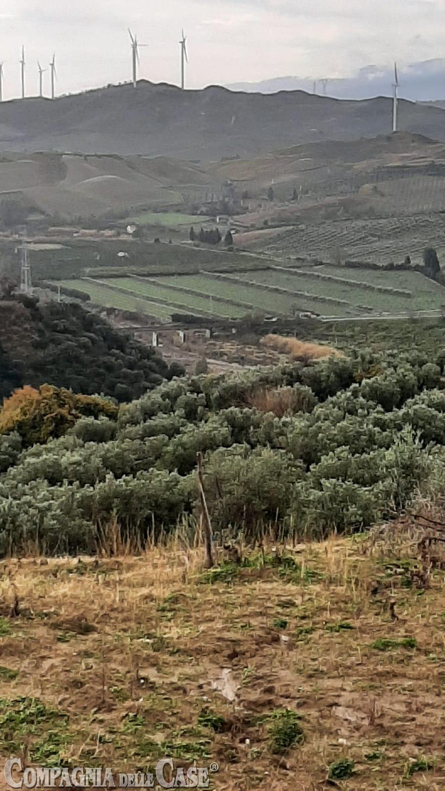 Soveria Simeri, in zona Ferruzza, terreno agricolo 13 ettari