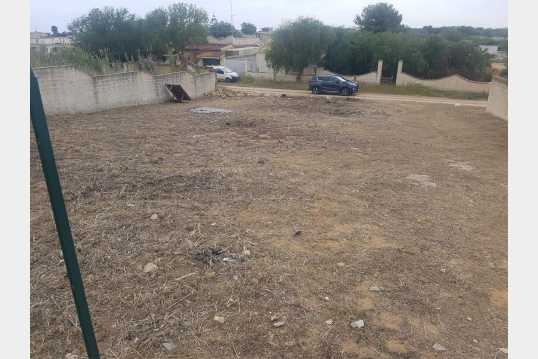 Terreno Agricolo in Vendita Trapani