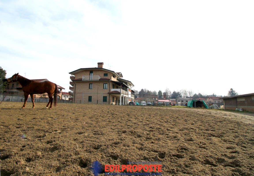 Plurifamiliare con terreno e stalle per cavalli
