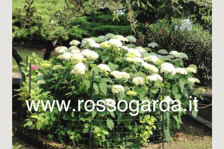 villa vista panoramica Soiano verde