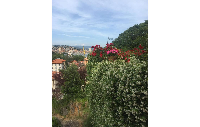 vista verde e città