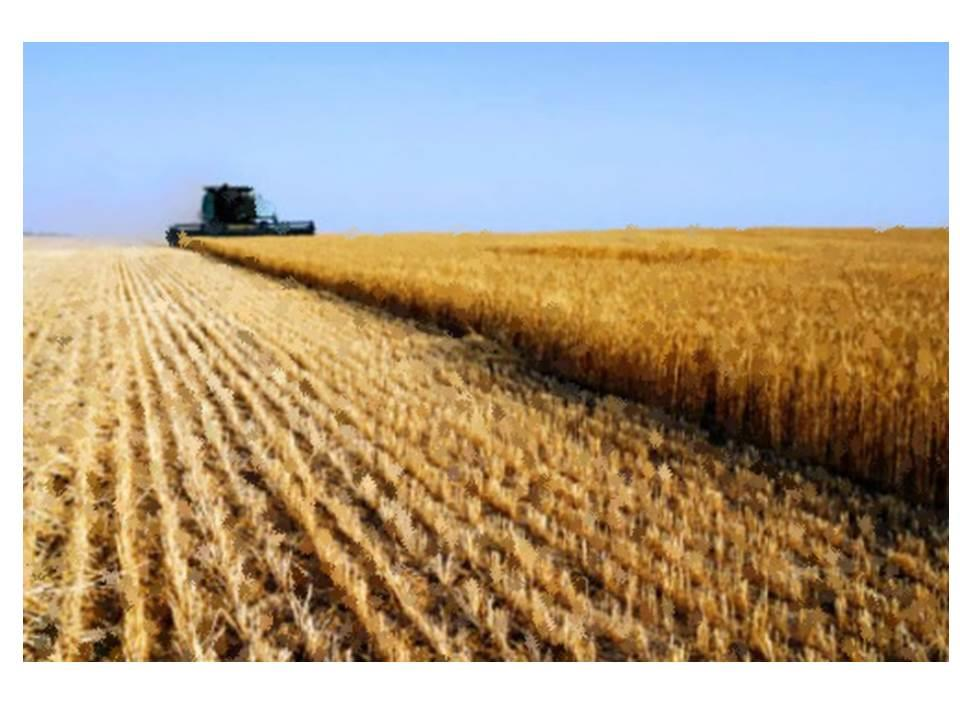 Vimercate Vendesi terreno agricolo