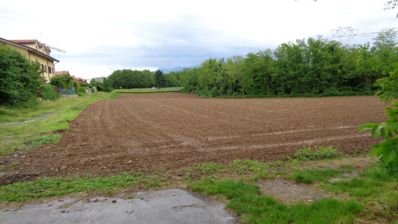 terreno agricolo in Mezzago