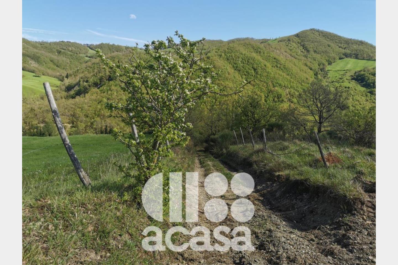 Terreno Agricolo in Vendita Bagno di Romagna